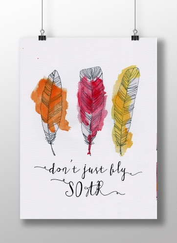 Dont just fly Soar