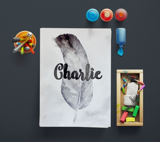 Charlie Feather Mockup